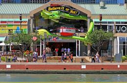 Ripley's Believe It or Not! 3 Way Combo CHILD Admission Ticket