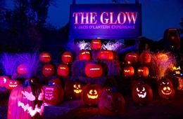 20% Off The Glow: A Pumpkin Wonderland