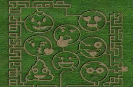 TWO Wayside Farm Fall Festival Admissions Featuring Emoji Corn Maze