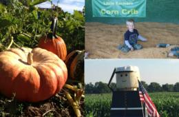 $12 for 2 Admissions to Wayside Farm Fall Festival ($20 Value - 40% Off)