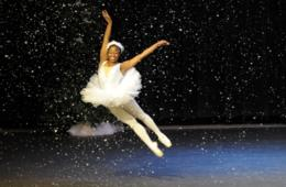 $10 for Ticket to The Nutcracker Presented by Alexandria Community Dancers & West Potomac Academy - Alexandria (50% Off)