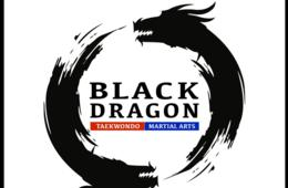 $179 for MT. Kim Black Dragon Martial Arts Camp for Ages 5+ - Gainesville/Haymarket ($171 Off!)