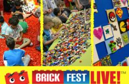 Brick Fest Live LEGO® Fan Experience Adult or Child Standard Day Pass at NRG Center
