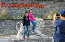 Brookfield Zoo Adult/Child/Senior Admission