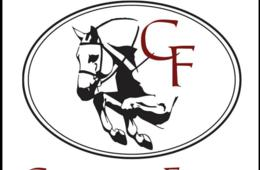 $180 for Horse Lovers Riding Camp at Cavallo Farm for Ages 5-10 - Leesburg ($250 Value - 29% Off)
