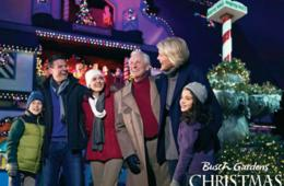 $27 for Single-Day Ticket to Busch Gardens® Christmas Town™ in Williamsburg, VA (29% Off!)