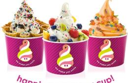 $10 for $20 Worth of Frozen Yogurt from Menchie's - 7 Locations in MD, DC, VA and PA! (50% Off)