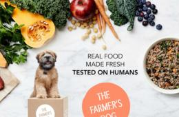 50% Off Fresh, Healthy, Human-Grade Dog Food Delivered to Your Door From The Farmer's Dog