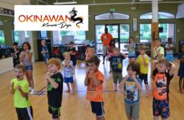 $199 for Fitness is Fun Ninja Multi-Activity Spring Break or Summer Camp for Ages 4-12 in Ellicott City - Karate, Swimming, Field Trips, Games & More! ($250 Value - 21% Off)
