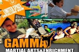 $175 for Gamma Academy Martial Arts & Enrichment Camp for Ages 4-14 in Downtown Bethesda ($300 Value - 42% Off)