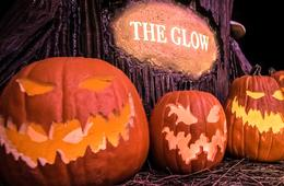 20% Off The Glow Jack-O-Lantern Experience