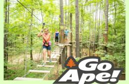 Go Ape Admission for the Following Location & Course ONLY: Chicago Treetop Journey (All Ages) - Bemis Park Location