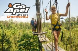 Go Ape Williamsburg Treetop Junior Course - All Ages