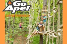 BACK BY POPULAR DEMAND! $23+ for Go Ape Treetop Junior or Treetop Adventure - BRAND NEW Springfield, VA Location + 13 Other U.S. Locations!