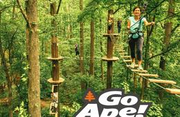 Go Ape Rockville Treetop Adventure Course Admission
