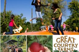 Great Country Farms September Admission + Apple Picking