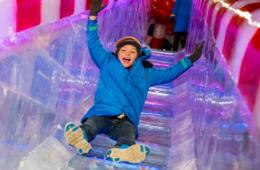 Save 40% Off ICE!® at the Gaylord National Resort - Featuring Christmas Around the World