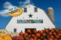 Jumbo's Pumpkin Patch: Four Corn Maze Admissions + $20 Pumpkin Credit