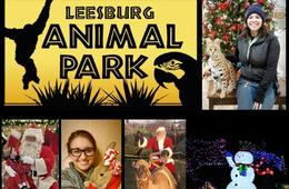 Two Tickets to Christmas Village at Leesburg Animal Park