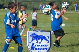 $160+ for The Lions Soccer Camp for Ages 4-14 - Rockville (Up to $55 Off)