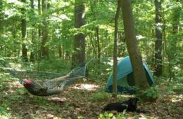 $19 for Family Overnight Camping at Little Bennett Park in Clarksburg, MD (39% Off)
