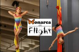 $15 for Introductory Aerial Arts Class at Monarca in Flight for Ages 6-12 + BIRTHDAY PARTY Option - Falls Church (40% Off)