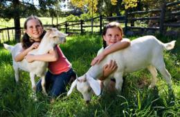 Montebello Barnyard Petting Zoo Admission + Bag of Feed