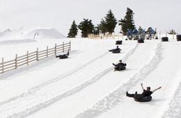 Snow Tubing Experience with Lift Tickets at Mt Baldy Ski Lifts