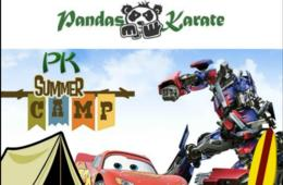$175 for Pandas Karate Camp for Ages 4-10 - Derwood (35% Off)