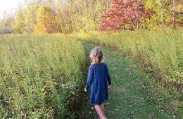 Pittsburgh Botanic Garden Admission