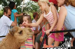 $7 for Child or $11 for Adult Admission to Roer's Zoofari in Vienna - Includes Wagon Ride! (Up to 31% Off)