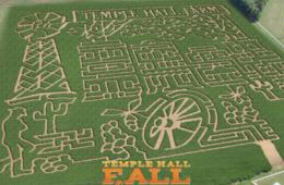 $8 for Temple Hall Fall Festival & Corn Maize FRIDAY Admission OR ANY DAY Admission from Oct. 31st - Nov 8th in Leesburg (Up to 43% Off)