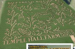 $8 for Temple Hall Farm FRIDAY Admission OR ANY DAY Admission from Oct 31st - Nov 3rd! (43% Off)