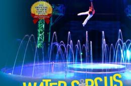 $7.50+ for Cirque Italia WATER CIRCUS Ticket - Gaithersburg & Sterling (50% Off!)