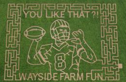 $12+ for Admission to Wayside Farm Fall Festival Featuring Kirk Cousins Corn Maze! (Up to 40% Off)