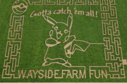 $14+ for Admission to Wayside Farm Fall Festival Featuring Pokemon Corn Maze - Berryville (Up to 38% Off)