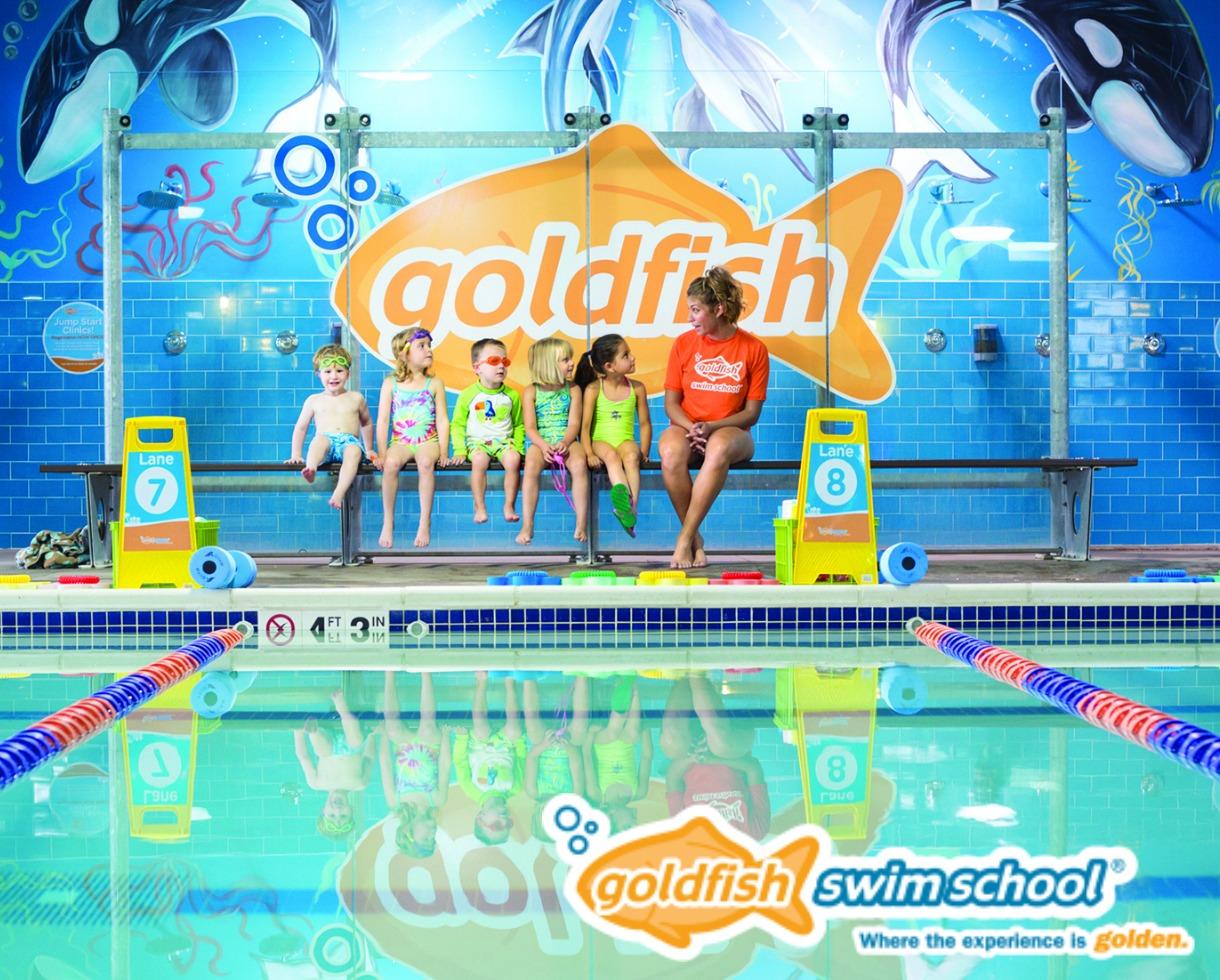 Deal 120 For Six Swim Lessons At Goldfish Swim School In