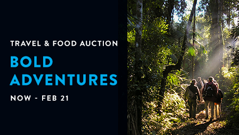 Bold Adventures- Travel Auction