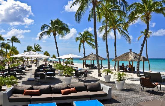Risultati immagini per Bucuti & Tara Beach Resorts