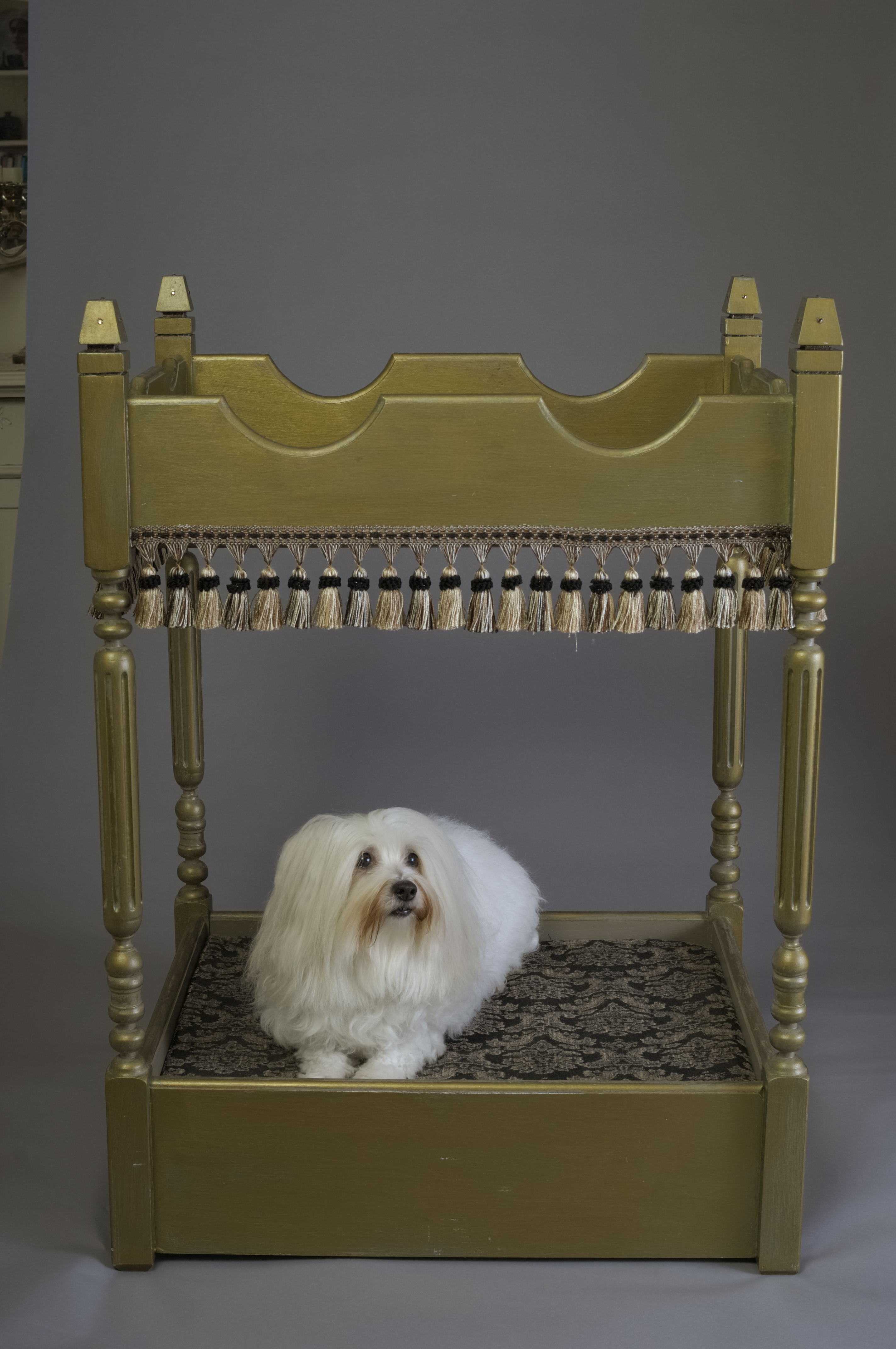 Charitybuzz: A Handcrafted Swarovski Crystal Gold Dog Bed ...