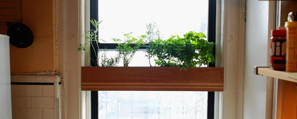 "charitybuzz: 2 custom ""treehouse"" indoor window planters from"