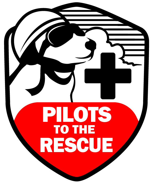 charitybuzz pilots to the rescue