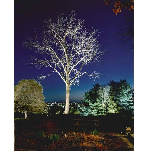 Charitybuzz landscape lighting package from design for Landscape lighting packages