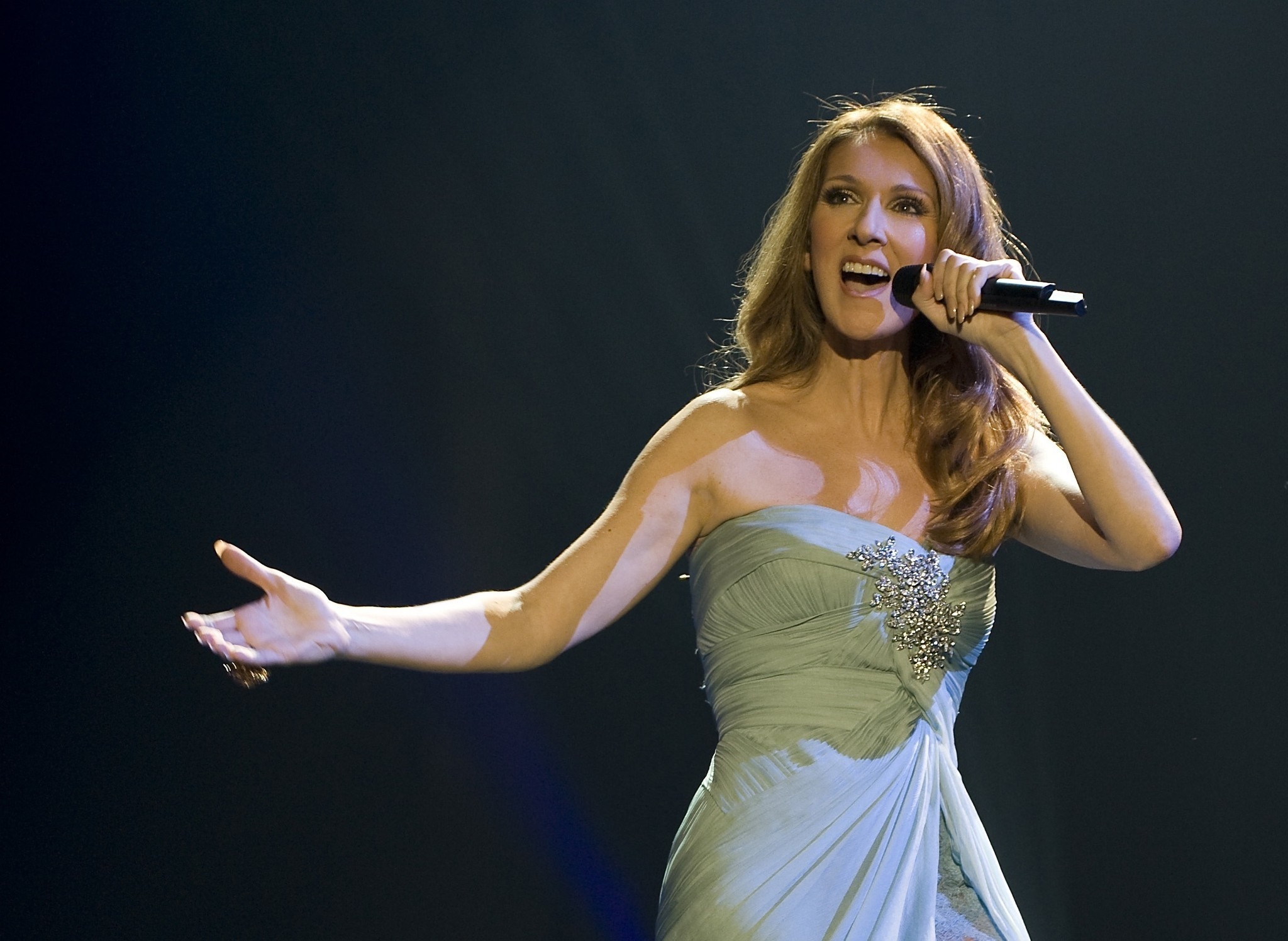 Charitybuzz Meet Celine Dion With Vip Tickets To Her Las