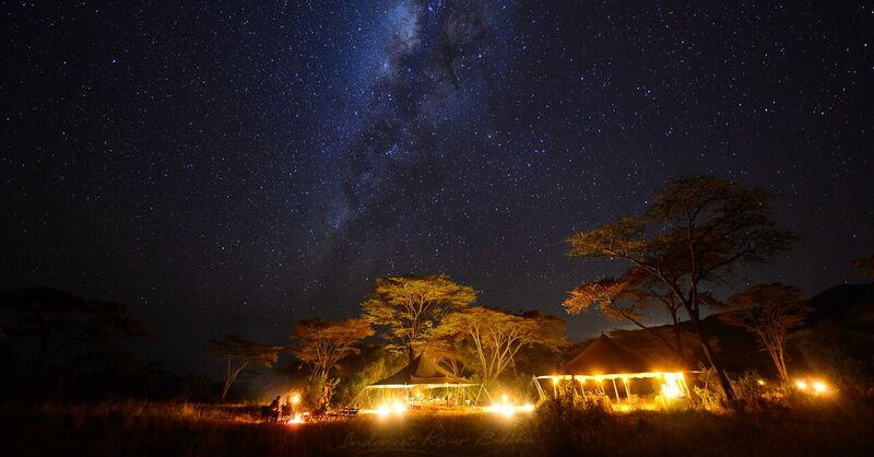 Explore Kenya on a Luxurious 8-Day Royal African Safari for