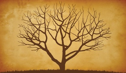 Charitybuzz: 10 Hours of Family Tree Research from