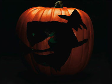 Pumpkin Carving Patterns    How to carve Pumpkins for halloween