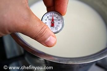 How to make Yogurt at Home from scratch   Homemade Indian (Dahi ) Yogurt