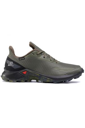 SALOMON Alphacross Blast Gtx SALOMON | 50000054 | L41105800