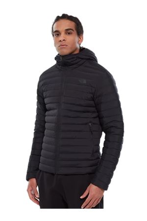 THE NORTH FACE Stretch Down Jacket THE NORTH FACE | 7457049 | NF0A3Y55JK3